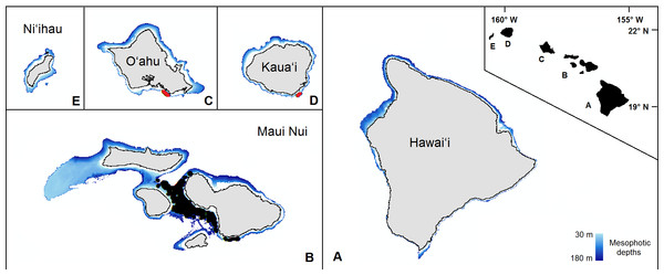 The mesophotic zone of the main Hawaiian Islands.