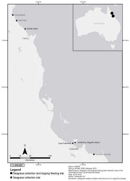 Seagrass collection and dugong feeding observation sites in the Great Barrier Reef, north-east Queensland Australia; locator map of Australia with Townsville and Cairns highlighted.
