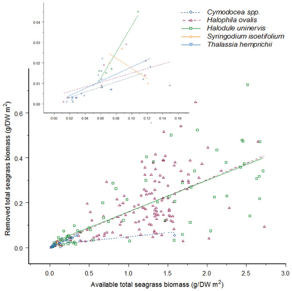 As the available seagrass biomass (g/DW m2) increases the amount of seagrass biomass consumed by dugong's increases proportionally for four seagrass species.