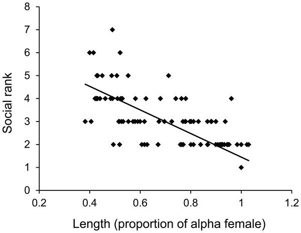 Size affects female status.