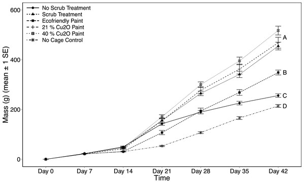 Settlement tile biomass as a function of treatment and day.