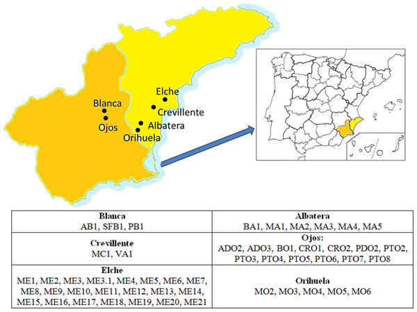 Location of the areas of origin of the accessions that comprised the germplasm collection studied.