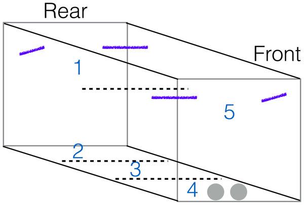 Aviary diagram.