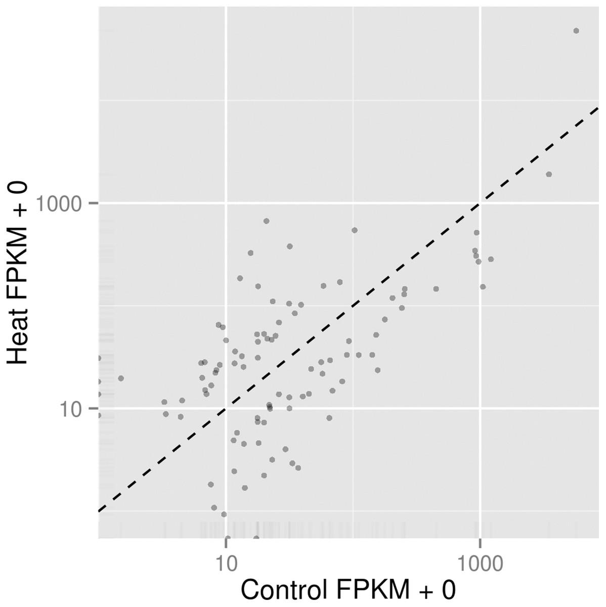 Transcriptome analysis of Pseudomonas aeruginosa PAO1 grown at both