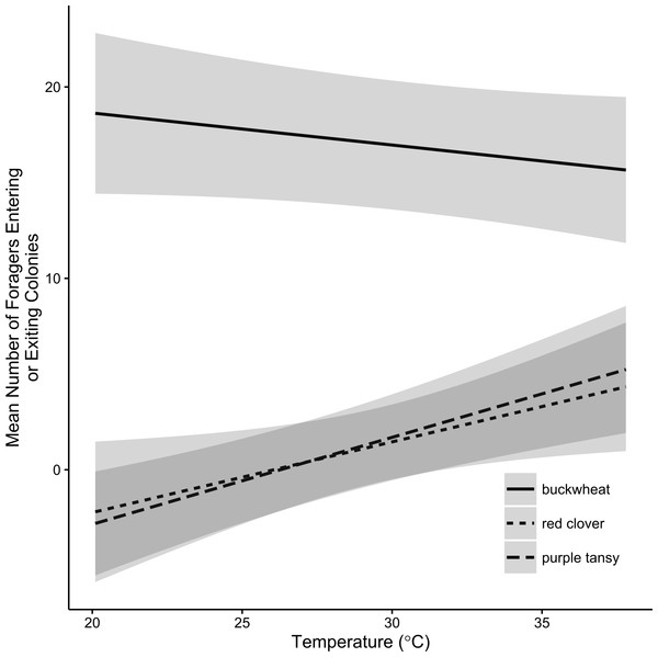 Effect display of the relationship between temperature and Bombus impatiens foraging activity.