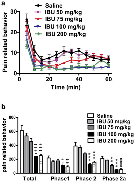 Effect of different doses of ibuprofen, administered i.p., on formalin-induced pain-related behavior in mice.