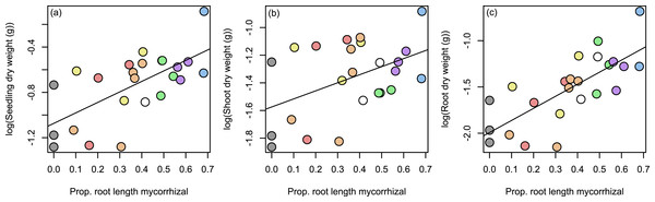 Relationship between seedling growth and mycorrhization level.