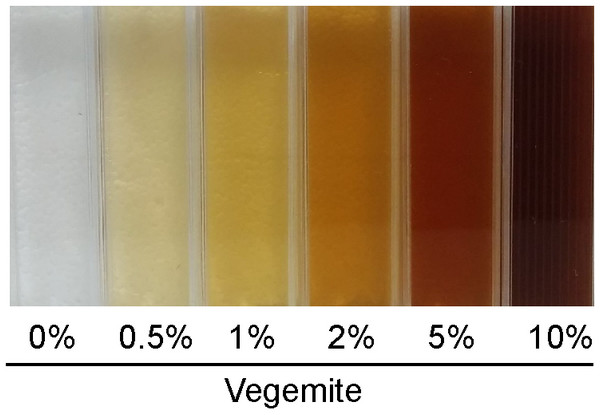 Solutions of glucose and various concentrations of Vegemite (0%, 0.5%, 1%, 2%, 5%, and 10%, all v/v).