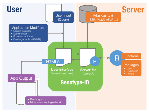 microbe id an open source toolbox for microbial genotyping and rh peerj com