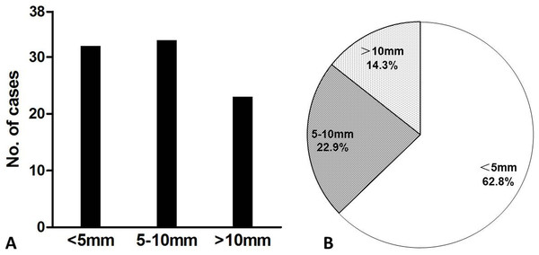 Number of patients (A) and bone lesions (B) with respect to lesion size.