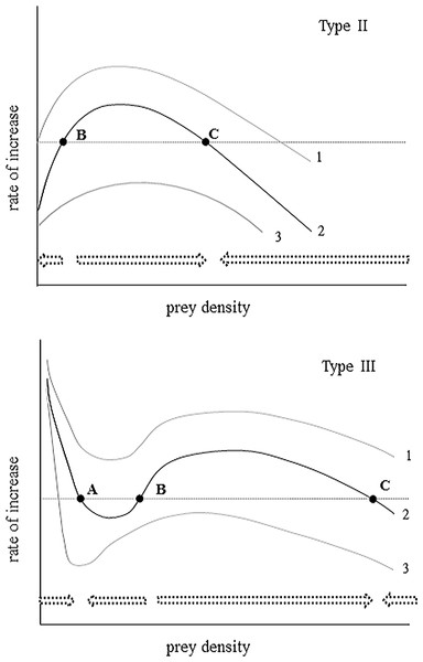 An illustration of the instantaneous rate of change for a prey population experiencing varying levels of Type II and Type III predation.