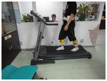 ... differences of the lower limb muscles in standing and walking [PeerJ