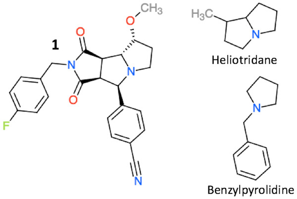 The structure of compound 1, heliotridane, and benzylpyrolidine.