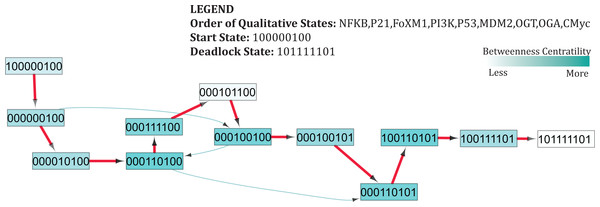 Subgraph isolated from the state transition graph (Fig. 5), highlighting tumor progression from the start state (1,0,0,0,0,0,1,0,0) leading to the deadlock state (1,0,1,1,1,1,1,0,1).