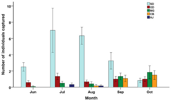 Species composition of small mammal communities across five months.