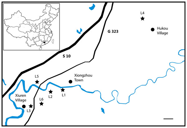 "Localities (L1–L5) in Nanxiong County, Guangdong Province that have produced specimens assigned to ""Eoalligator chunyii"" and/or Asiatosuchus nanlingensis."
