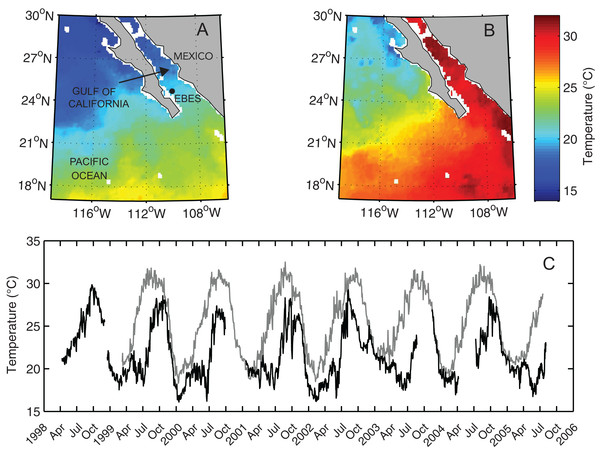Map of the Southern Gulf of California and Eastern Pacific Ocean overlain with NOAA AVHRR sea surface temperature (SST).