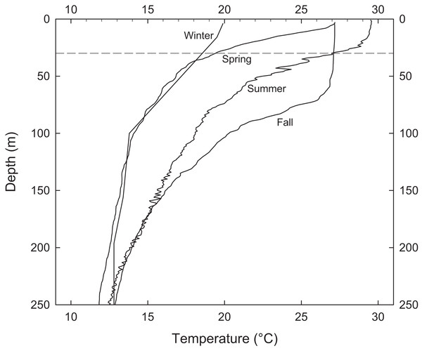 Representative water column profiles of temperature immediately adjacent to EBES seamount.