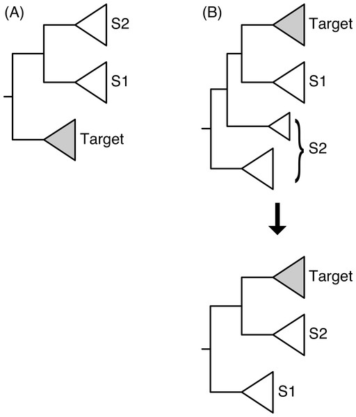 Two configurations for the identification of the sister subtrees given the location of the target subtree.