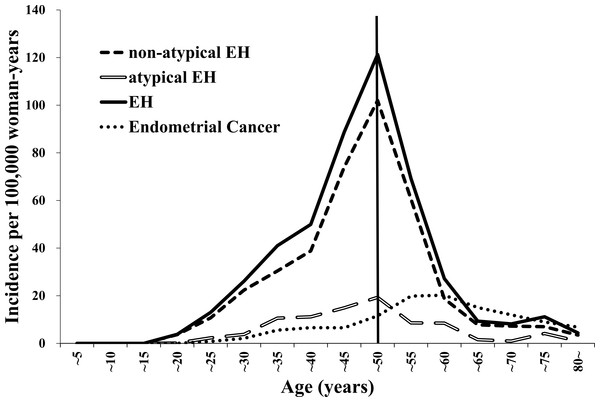 The trends in the endometrial hyperplasia and endometrial cancer incidence rates from 2009 to 2012 stratified according to 5-year age increments.