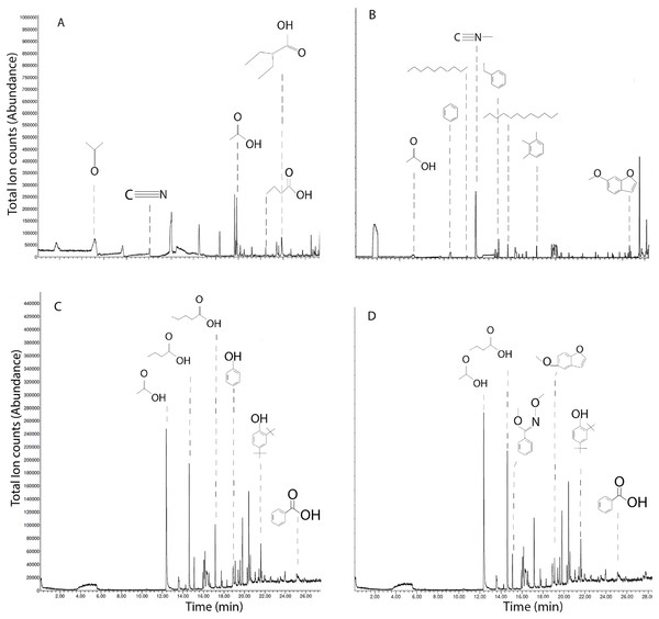 Ion chromatograms of SPME on biochars and leachates.