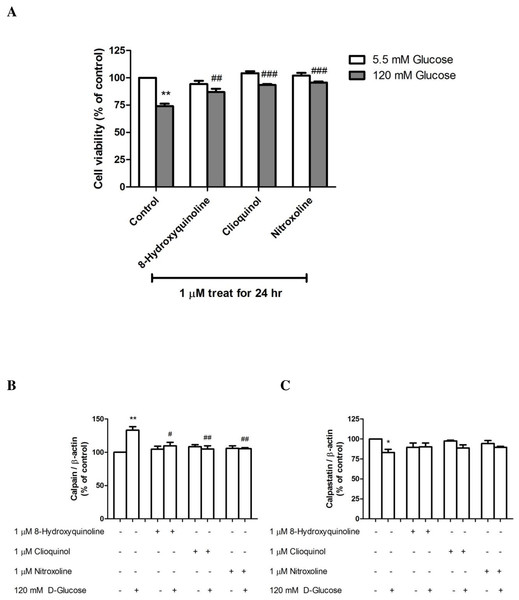 The effect of 8-hydroxyquinoline and derivatives on the high glucose (120 mM) in SH-SY5Y cells.