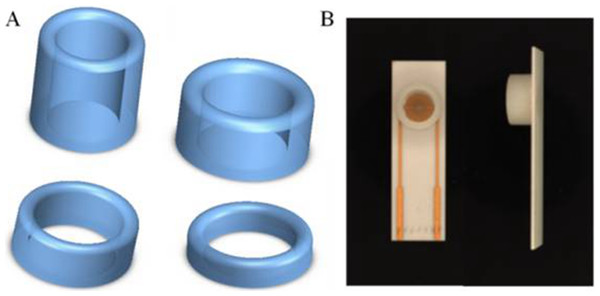 (A) 3D printed ring devices with different diameters and (B) SPIM with ring device to form a nest-like device.