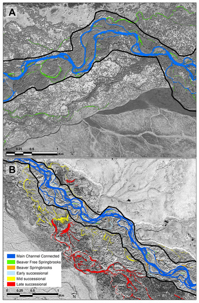 Portions of each of the study floodplains contrasting the Kol (A) without beavers and the Kwethluk (B) with 80 percent of the off-channel habitats dammed by beavers.