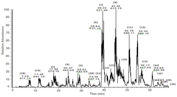 Negative LC/ESI/mass spectrum of phenolics from fraction III of hydro-alcoholic extract of Schotia brachypetalea.