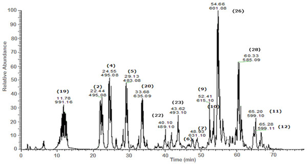 Negative LC/ESI/mass spectrum of phenolics from fraction IV of hydro-alcoholic extract of Schotia brachypetalea.