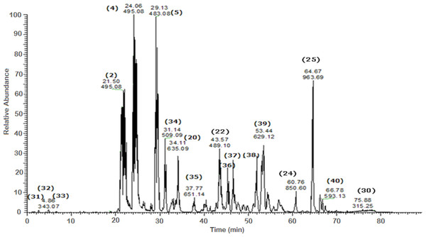 Negative LC/ESI/mass spectrum of phenolics from Sub-fraction I (of fraction 4) of hydro-alcoholic extract of Schotia brachypetalea.