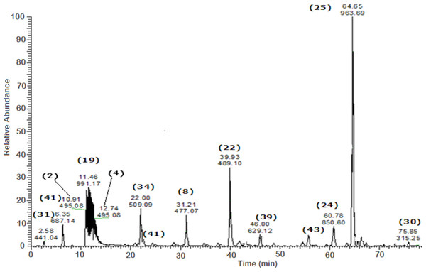 Negative LC/ESI/mass spectrum of phenolics from Sub-fraction II (of fraction 4) of hydro-alcoholic extractof Schotia brachypetalea.
