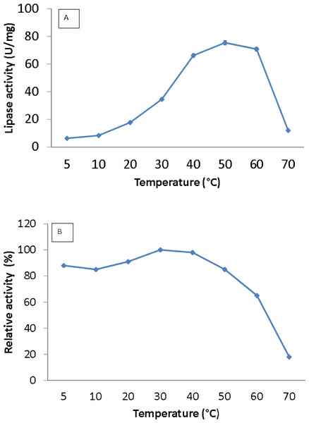 Effect of temperature on purified AMS3 lipase activity.