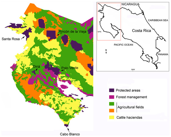 Dry forest fragments and land use in northwestern Costa Rica.