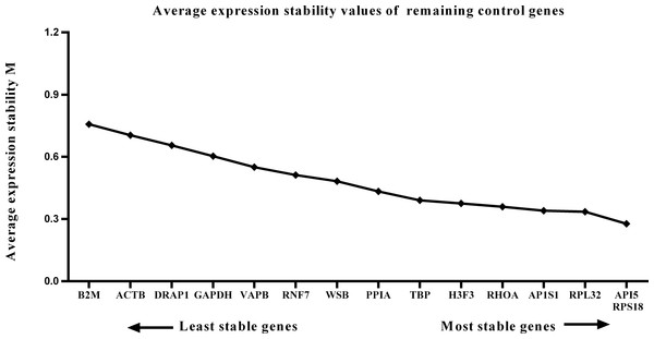 Average expression stability (M) of 15 candidate reference genes and the best combination of two genes were calculated for the postnatal period.