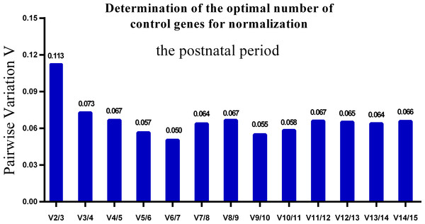 Determination of the optimal number of reference genes for normalization in postnatal periods.