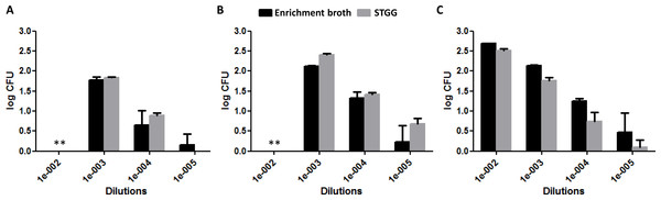Quantification of bacterial load (log counts of colony forming units [CFU]) at different dilutions of enrichment broth and STGG.
