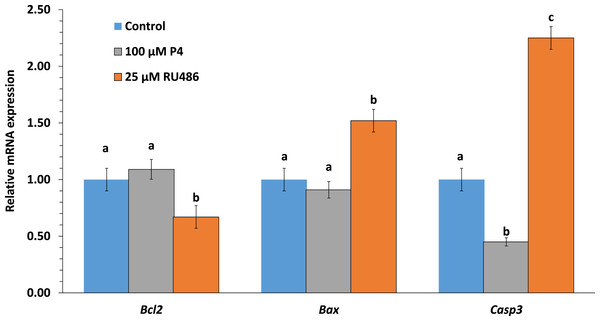Effects of P4 or RU486 in IVM on blastocysts apoptosis-related gene expression.