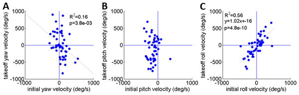 A comparison of the rotational velocity about the locust's principal axes at the beginning of hind-leg extension and at take-off.