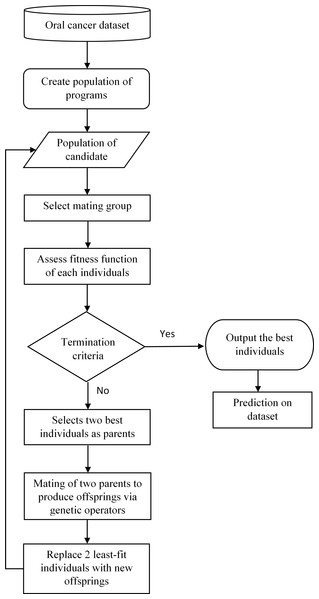 Framework of oral cancer prognosis with genetic programming.