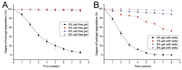 Degradation properties of gelatin/mTG hydrogels containing with or without cells.