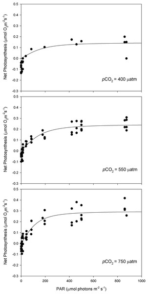 Light response curves of oxygen evolution with CO2.