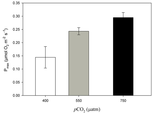 Maximum photosynthesis of Phymatolithon lusitanicum after 11 months at different CO2 levels.