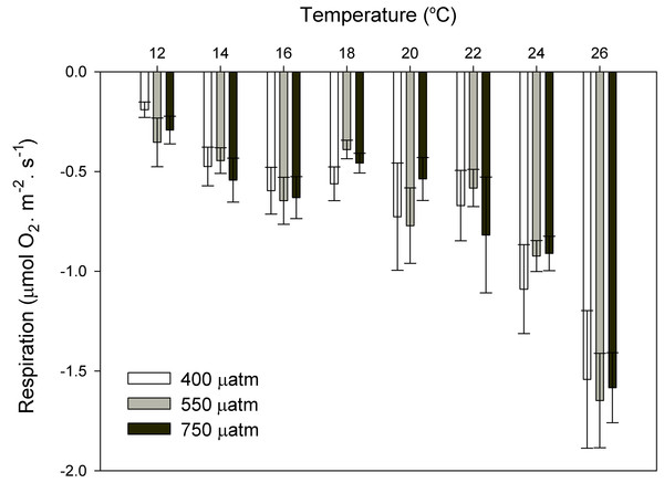 Respiration rates of coralline algae with CO2 and temperature after 11 months.