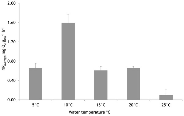 Mean net primary production rates of Furcellaria lumbricalis at different water temperatures in the laboratory conditions (PAR ca. 200 µmol m−2 s−1 and pCO2 ca. 200 µatm).