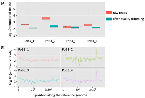 Sequencing depth for PoB3 samples.