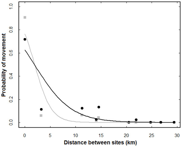 Effect of distance between sites on the probability of movements occurring among them.