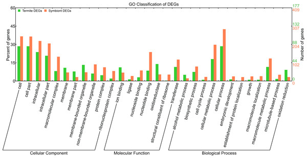 Gene Ontology classification of termite and symbiont DEGs.