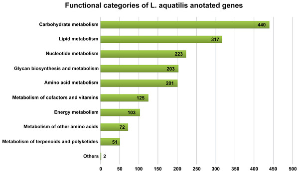 Metabolism functional categories of L. aquatilis annotated genes.