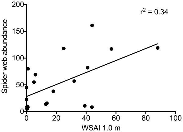 The abundance of spider webs as a function of web scaffold availability index (WSAI) at 1.0 m.
